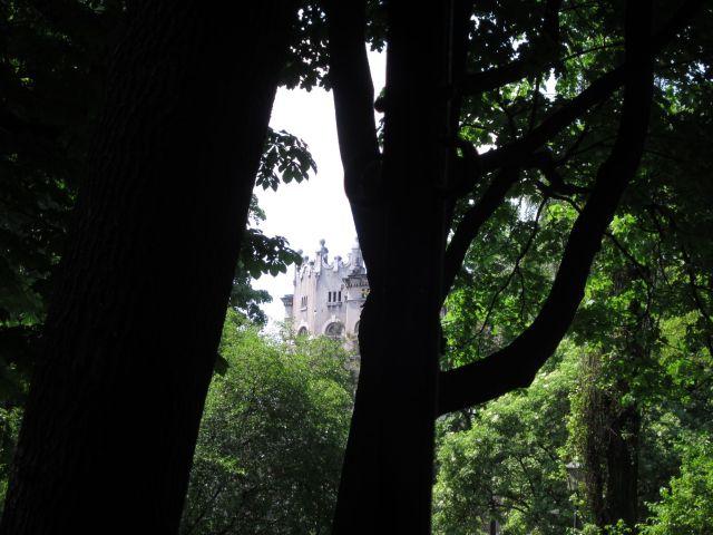 Et gammelt tårn sett gjennom trærnes bladverk
