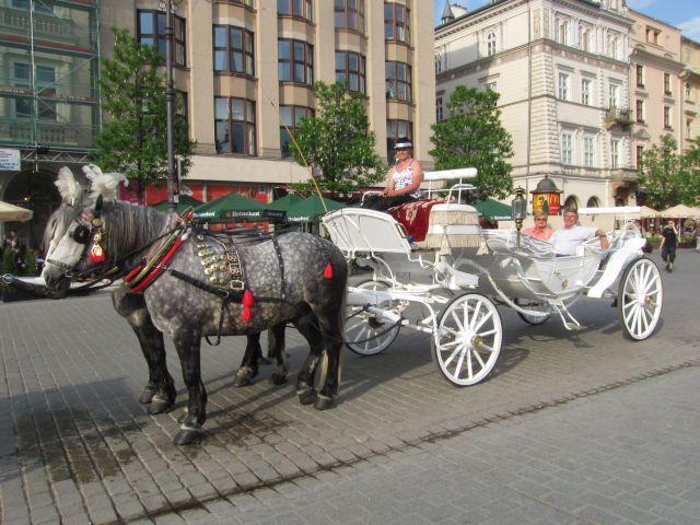 Hester, kusk, vogn og passasjerer.