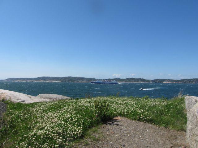 Colorlines Bohus på vei fra Sandefjord til Strømstad (foto Terje Rønning)