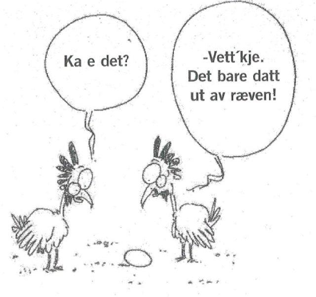 Om høner og egg