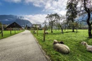 Bondegård i Østerrike
