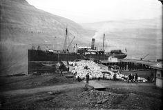 Islandsk fraktebåt fra 1905.