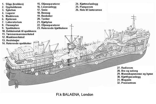 Hvalkokeriet Balaena