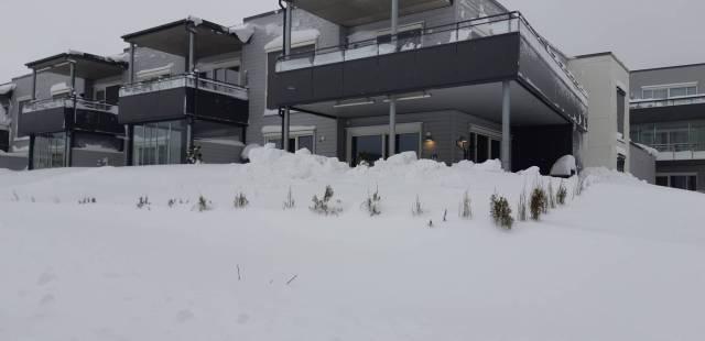 2019 02 02 - Mo Terrasse i snø