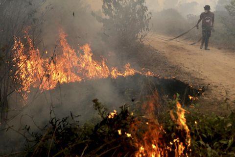 2019 08 22 - regnskogen brenner