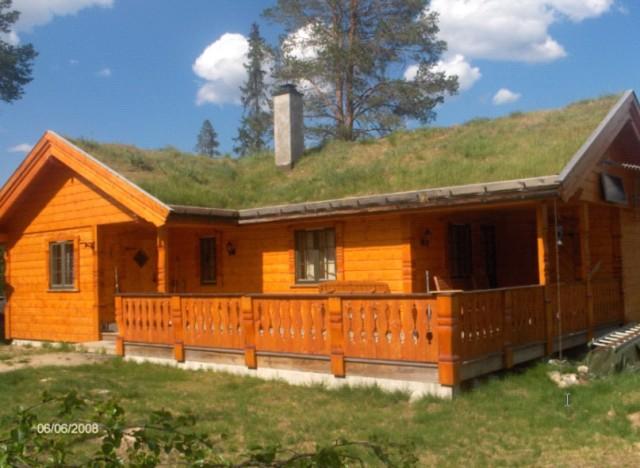Hytte Engerdal kommuneskog